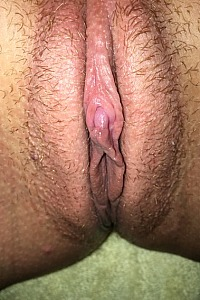 Wife's wet pussy collection